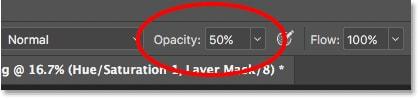 Brush opacity Photoshop