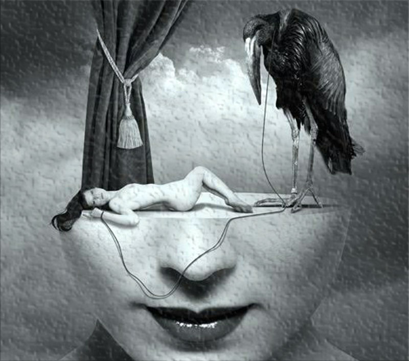 Image Manipulation art