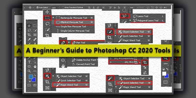 A Beginner's Guide to Photoshop CC 2020 Tools