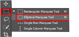 Elliptical Marquee Tool in panel