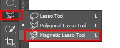 Magnetic Lasso Tool in panel