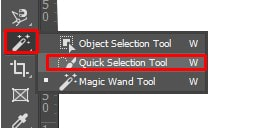 Quick Selection Tool icon