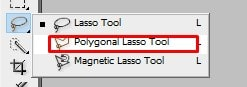 use the Polygonal Lasso Tool