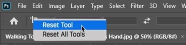 Reset Crop Tool