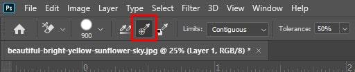 Sampling Option Background Eraser Tool