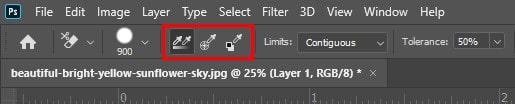 Sampling Options of Background Eraser Tool