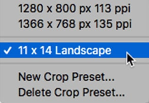 Showing Customized Preset Crop