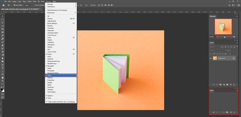 Where is the Paths Panel in Photoshop