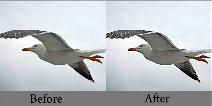 sharpened image in Photoshop