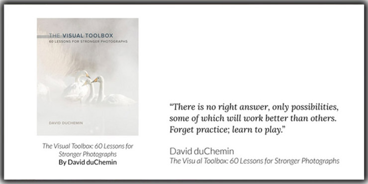 The Visual Toolbox 60 Lessons for Stronger Photographs by David duChemin